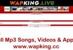 wapking